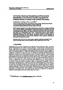 Cell Surface Membrane Remodelling and Mitochondrial Remodelling ...