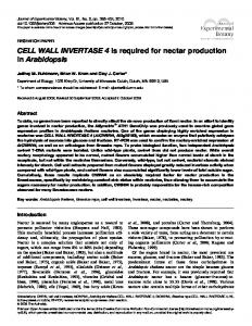 CELL WALL INVERTASE 4 is required for nectar production in ...