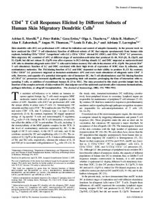 Cells Subsets of Human Skin Migratory Dendritic T Cell Responses ...