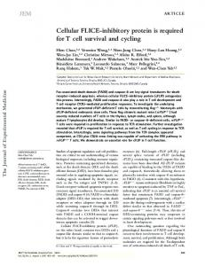 Cellular FLICE-inhibitory protein is required for T cell ... - BioMedSearch