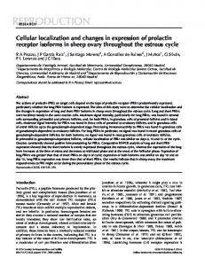 Cellular localization and changes in expression of prolactin receptor ...