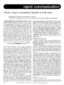 Cellular oxygen consumption depends on body mass