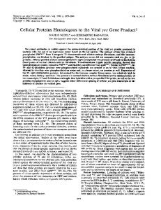 Cellular Proteins Homologous to the Viral yes Gene Productt