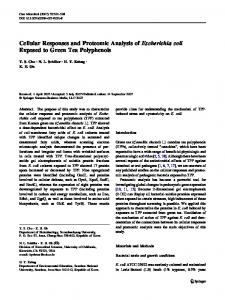 Cellular Responses and Proteomic Analysis of Escherichia coli ...