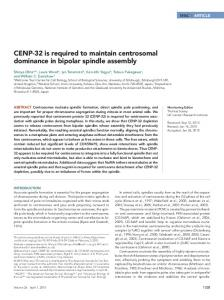 CENP-32 is required to maintain centrosomal dominance in bipolar ...