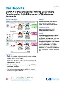 CENP-A Is Dispensable for Mitotic Centromere Function after Initial ...