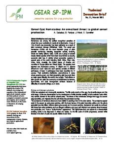 Cereal cyst nematodes: an unnoticed threat to global cereal ... - cimmyt