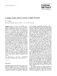 Cerebellar nuclear activity in relation to simple ... - Springer Link