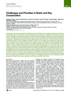 Challenges and Priorities in Shark and Ray Conservation - Cell Press