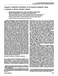 Changes in subcellular distribution of the ammonia transporter, Rhcg ...