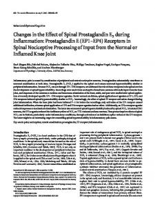 Changes in the Effect of Spinal Prostaglandin E2 during Inflammation ...