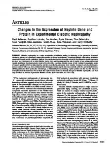 Changes in the Expression of Nephrin Gene and Protein in ...
