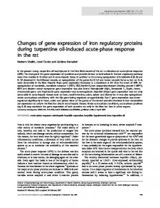 Changes of gene expression of iron regulatory proteins ... - Nature