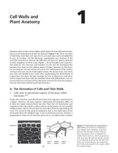 Chapter 1: Cell Walls and Plant Anatomy - Garland Science