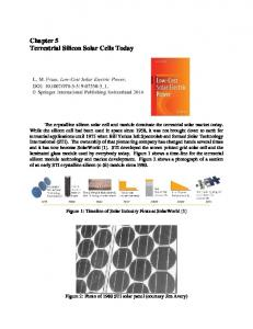 Chapter 5 Terrestrial Silicon Solar Cells Today