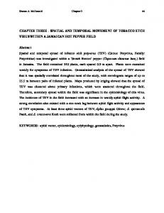 CHAPTER THREE - SPATIAL AND TEMPORAL ... - VTechWorks