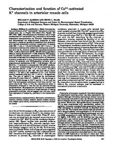 Characterization and function of Ca2-activated K channels ... - CiteSeerX