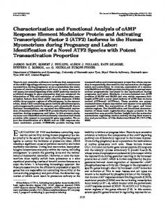 Characterization and Functional Analysis of cAMP Response Element ...