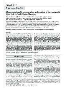 Characterization, Cryopreservation, and ... - Wiley Online Library