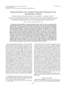 Characterization of an Atypical Superoxide Dismutase from ...