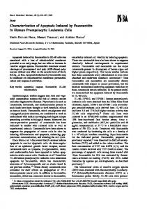 Characterization of Apoptosis Induced by ... - Semantic Scholar
