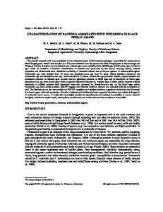 characterization of bacteria associated with pneumonia in black ...