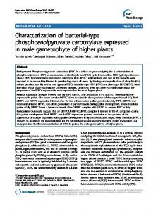 Characterization of bacterial-type ... - BioMedSearch