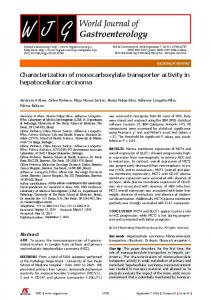 Characterization of monocarboxylate transporter activity in ... - Core