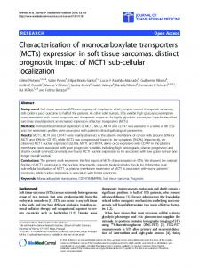 Characterization of monocarboxylate transporters (MCTs) expression ...