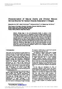 Characterization of Natural Zeolite and Chicken Manure Derived