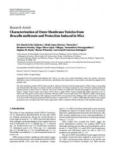 Characterization of Outer Membrane Vesicles from Brucella melitensis ...