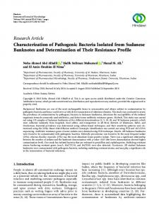 Characterization of Pathogenic Bacteria Isolated from Sudanese