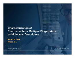 Characterization of Pharmacophore Multiplet Fingerprints as