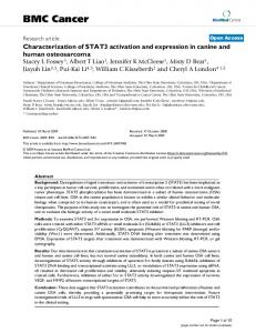 Characterization of STAT3 activation and expression in canine and ...