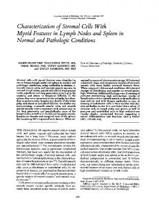 Characterization of stromal cells with myoid features in lymph nodes ...