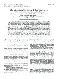 Characterization of the Acetate Binding Pocket in the Methanosarcina ...