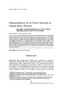 Characterization of the folate receptor in human molar ... - Springer Link