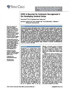 CHD2 is required for embryonic neurogenesis ... - Wiley Online Library