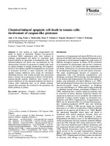 Chemical-induced apoptotic cell death in tomato cells - Springer Link