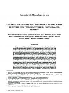 CHEMICAL PROPERTIES AND MINERALOGY OF SOILS ... - SciELO