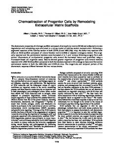 Chemoattraction of Progenitor Cells by Remodeling Extracellular ...