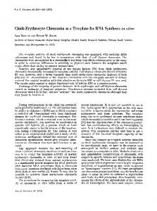 Chick-Erythrocyte Chromatin as a Template for ... - Wiley Online Library