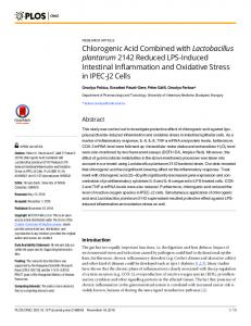 Chlorogenic Acid Combined with Lactobacillus
