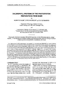 Chlorophyll-proteins of two photosystem I preparations ... - Springer Link