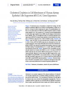 Cholesterol Depletion in Cell Membranes of Human Airway Epithelial ...