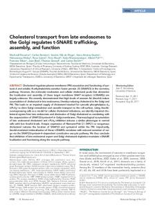 Cholesterol transport from late endosomes to the Golgi ... - CORE