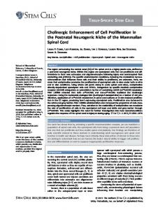 Cholinergic Enhancement of Cell Proliferation in ... - Wiley Online Library