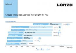 Choose the Lonza Agarose That's Right for You - BioResearch