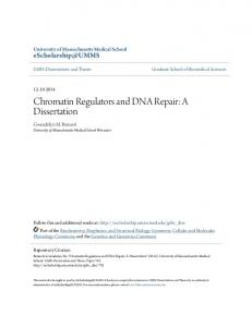 Chromatin Regulators and DNA Repair: A Dissertation - eScholarship ...