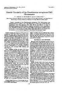 Chromosome - Journal of Bacteriology